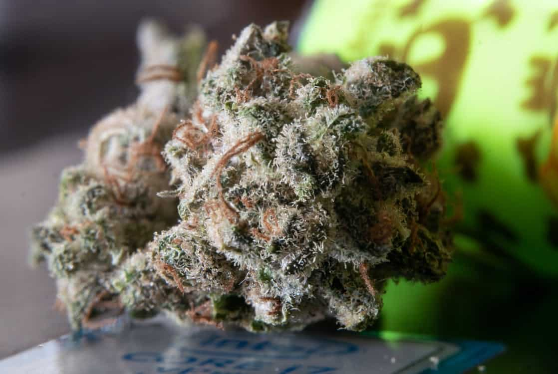 Wedding Cake Marijuana Strain picture